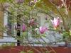 banja-vrdnik-apartmani-park-10