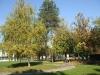 banja-vrdnik-jesen-13